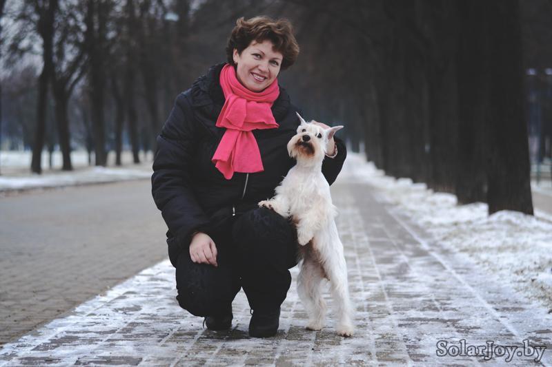 щенки белого цвергшнауцера в Минске