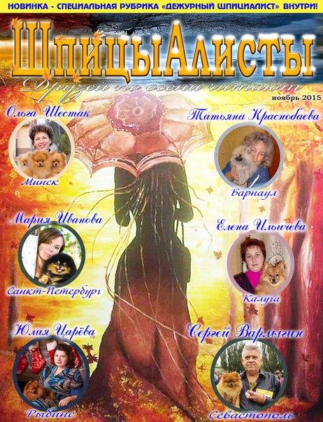 померанский шпиц в Минске