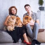 купить щенка померанского шпица в Минске - питомник Солар Джой