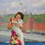 цвергшнауцеры белые в Минске