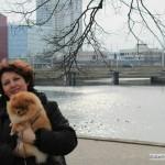 померанские шпицы в Минске-питомник Солар Джой